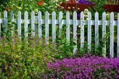 Výsledek obrázku pro plaňkový plot