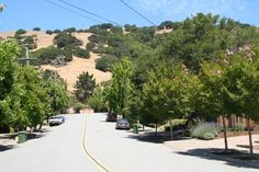 Street in Terra Linda - very peaceful residential neighborhood with lots of trees, Eichler homes and immediate access to open space - in beautiful Marin County, CA