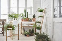 The Satsumas line, which already has launched in Sweden, includes a plant table, a three-tier plant stand, and a five-rung plant ladder.
