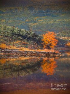 ✯ Autumn at Lake Lenore, Washington