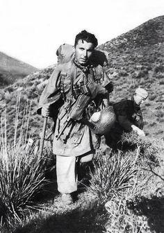 Fallschirmjaeger - German paratrooper