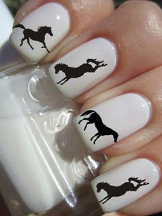 Horse nails. Not sure how they last in the barn. :-)