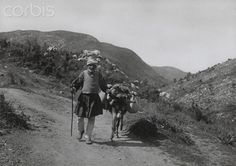 An elderly man and his donkey travel along a Greek mountain road-Fred Boissonnas National Geographic Images, Greece Photography, American Frontier, Athens Greece, Back In Time, Old West, Adventure, Elderly Man, Pictures