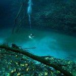 Cenote Angelita, un río salado corriendo en un pozo de agua dulce