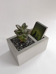 Bunk cement flower business cards Taiwan (excluding plants, stones, earth)