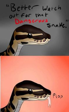 That snek is obviously not dangerous it's too cute ( yes I know snakes are dangerous sometimes but it's a python shush I know that doesn't excuse it )