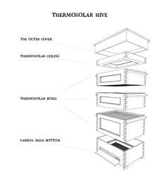 termosolar hive