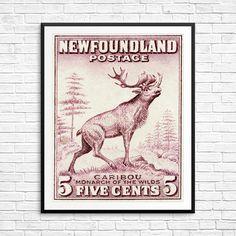 Caribou, Newfoundland, Newfoundland postage, Newfoundland Stamp, Newfoundland history, vintage wall art, antique etching, postage stamp art Newfoundland Canada, Newfoundland And Labrador, Poster Size Prints, Art Prints, Postage Stamp Art, Vintage Wall Art, Historical Art, Pigment Ink, Moose Art