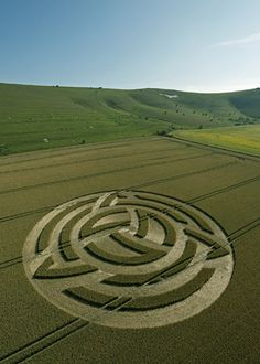 Do crop circles actually materialize at the rate of one event worldwide every summer evening, with half occuring in England?