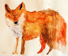 Miroco Machiko - fox