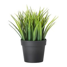 IKEA FEJKA Artificial potted plant Grass 10.5 cm Lifelike artificial plant that remain just as fresh-looking year after year.