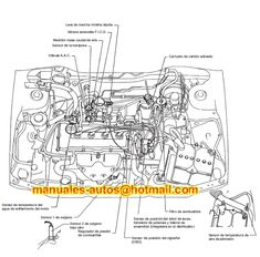 Vacuum hose diagram toyota 4runner 3VZE Toyota, Toyota