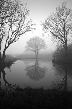 "stephenmcnallyphotography: ""Misty foggy cold morning Natures breath slowly rises Reflection ripples """