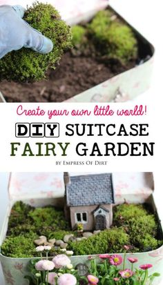Create your own little world with a vintage suitcase fairy garden. In just an hour you can furnish your own secret garden with fairies, plants, moss, and other miniatures for a wonderful display. Come learn the best tips for this DIY project. #sponsored: