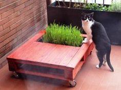 DIY table jardin palette pour le chat • Hellocoton.fr