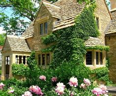 English cottage with cool ivy