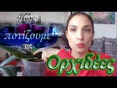 Πώς ποτίζουμε μία ορχιδέα | Orchids Vlog #3 - YouTube Home And Garden, Youtube, House, Home, Youtubers, Homes, Youtube Movies, Houses
