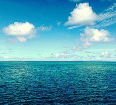 SAXON REEF GREAT BARRIER REEF - QLD Australia . Once in Cairns... Great Barrier Reef. This is the only picture I have taken. The colors of the water show that there is something under the sea. It is the Saxon Reef. The other great shots?! Recorded in my mind. . . Chegando a Cairns... Grande Barreira de Corais. Esta é a única foto que eu tirei. As cores da água mostram que existe algo embaixo da superfície. Trata-se do Recife Saxon. As outras imagens espetaculares da Grande Barreira?! Estão…