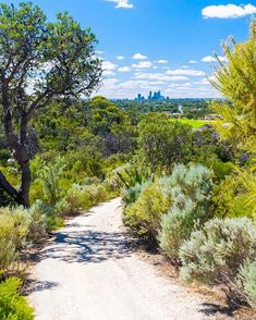 Get out and get active at Perths best hiking trails. Take on these 8 hiking trails for the ultimate back to nature experience. Australia Travel, Western Australia, Kings Park Perth, Summer Holiday Activities, Nature Source, City Beach, Back To Nature, Get Outside, Hiking Trails