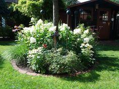 ▷ 1001+ Fabelhafte Bilder Zur Vorgartengestaltung | Garden Ideas And Gardens
