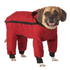 When it's cold and wet outside, does your dog dread going for walks?  Try the Weather Master Quilted Red Rainsuit for Dogs.
