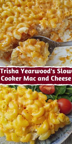 Feb 2020 - Trisha Yearwood mac and cheese crockpot is an unrivaled food! The creamy and cheesy taste is ideal for snacks, festive and ordinary family dinners. A wide variety of pasta gives us the opportunity to fantasize and Slow Cooker Mac N Cheese Recipe, Mac Cheese Recipes, Slow Cooker Recipes, Meat Recipes, Appetizer Recipes, Crockpot Recipes, Cooking Recipes, Meat Appetizers, Slow Cooker Appetizers