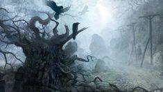 THE WITCHER fantasy dark raven death gothic halloween f wallpaper background 3d Fantasy, Fantasy Kunst, Fantasy Places, Dark Fantasy, Gothic Wallpaper, Forest Wallpaper, Tree Wallpaper, Gothic Landscape, Fantasy Landscape