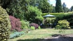 July - First of the new trees in the 'Acer Garden'