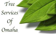 Tree Services of Omaha - Nebraska
