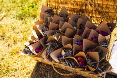 #photographie #photography  #mariage #wedding #couple #nature #photographe #photographer #lille #nord #france Succulents, France, Couples, Nature, Plants, Wedding, Weddings, Photography, Valentines Day Weddings
