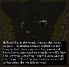 warrior cats hollyleaf quotes - Google Search