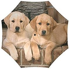 Custom Cute Labrador Dog Puppies Compact Travel Windproof Rainproof Foldable Umbrella