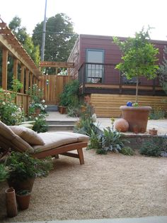 Native and drought tolerant landscaping