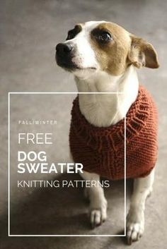 Free dog sweater knitting patterns for extra small, small, medium, large and extra large dog breeds. Dog sweaters - Free knitting patterns - Take a look through this roundup of dog sweater knitting patterns and choose one to make this fall! Knitting Patterns For Dogs, Crochet Dog Sweater Free Pattern, Dog Coat Pattern, Knit Dog Sweater, Knitting Ideas, Free Knitting, Free Crochet, Sweater Patterns, Clothes Patterns