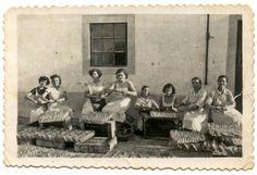 Lagos exportava peixe da sua costa, já desde a época romana. O garum, por exemplo, era envasilhado em ânforas de barro, depois de moído e...