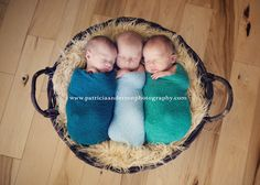 Triplet Newborn Photography - This is just precious!! www.patriciaandersonphotography.com