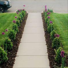 We're celebrating! Dream Garden, Flower Pots, Garden Design, Sidewalk, Celebrities, Board, Inspiration, Flower Vases, Biblical Inspiration