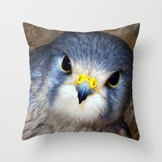 Kestrel in close-up Throw Pillow by F Photography and Digital Art - $20.00