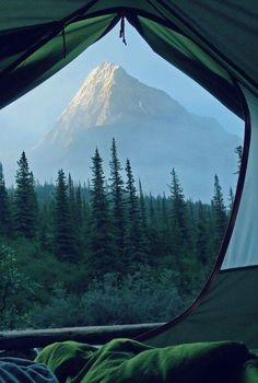Wouldn't you love to wake up to this! #Nature #Environment