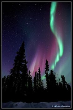 Fairbanks Alaska pohto shared by Marketa Stanczykova