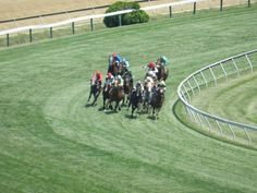 The turf course at Pimlico Race Course in Baltimore, MD.