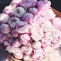 Peonies are the greatest.