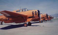 Hemet Valley Flying Service lineup, Hemet Ca., 1965