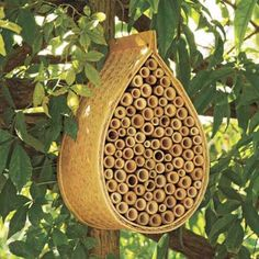 Lure pollinating powerhouses into your garden with a condo-style bamboo hive for non-stinging mason bees. | Photo: Courtesy of Gardeners.com | thisoldhouse.com