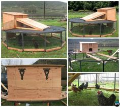 DIY Trampoline Frame Chicken Coop Instructions