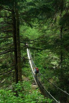 The Logan Creek suspension bridge on the West Coast Trail in Pacific Rim National Park Reserve, Vancouver Island, BC, Canada http://www.pc.gc.ca/eng/pn-np/bc/pacificrim/activ/activ6a.aspx Photo by Josh McCulloch http://joshmcculloch.photoshelter.com/gallery-image/Canadas-West-Coast-Trail/G00006D7srvHv..U/I0000Ut9QiHucJV0