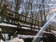 Budai Sárga: a főváros alig ismert hátsó kertje - Szép kilátás! Sorrento, Ale, Waterfall, Summer, Outdoor, Outdoors, Summer Time, Ale Beer, Waterfalls