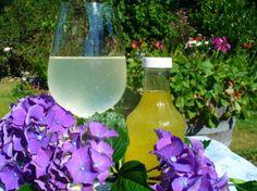 Lemon Syrup Recipes