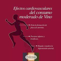 Algunos efectos cardiovasculares del consumo moderado de vino. Ecards, Memes, Twitter, Food, Wine Cellars, Hams, Health, Sweet, Places