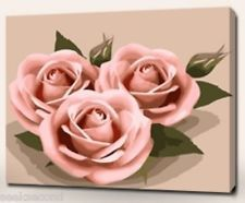 Acrylic Paint by Number Kit 50x40cm (20x16'') Three Pink Roses DIY BW7282